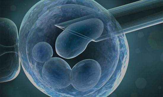 Conceive-IVF-Clinic-In-Pune